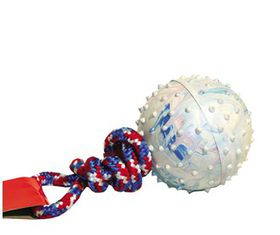 Dog Toy Pimple Ball On Rope - 6cm