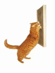 Kunduchi -  Deluxe Honeycomb Wooden Cat Scratcher Wall Unit