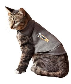 ThunderShirt - For Cats - Grey (Size: Small)