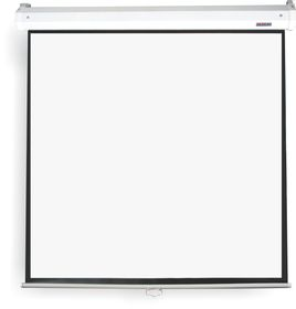 Parrot Pulldown Projector Screen - 2450 x 1420mm