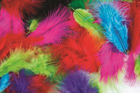 Dala Craft Feathers - 15cm Assorted Colours (Bag of 20)