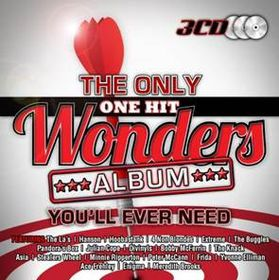 Only One Hit Wonders Album You'll Ever N - Only One Hit Wonders You'll Ever Need (CD)