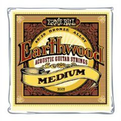 Ernie Ball 2002 Earthwood Medium 80/20 Bronze Acoustic String Set (13 - 56)