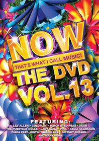 Now The DVD - Vol.13 - Various Artists (DVD)