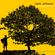 Jack Johnson - In Between Dreams (Vinyl)