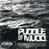 Puddle Of Mudd - Icon (CD)