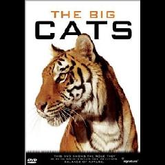Big Cats - (Import DVD)