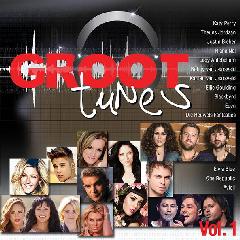 Groot Tunes - Various (CD)