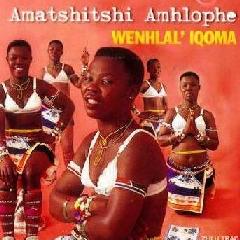 Amatshitshi Amhlophe - Wenhlal' Iqoma (CD)