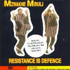 Mzwakhe Mbuli - Resistance Is Defence (CD)