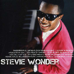 Wonder, Stevie - Icon (CD)