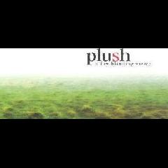 Plush - A Few Blinding Views (CD)