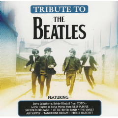 Tribute To The Beatles - Various Artists (CD)
