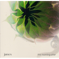 James - Morning After (CD)