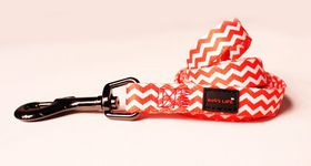 Dog's Life - Pooch Webbing Leash - Chevron - Medium
