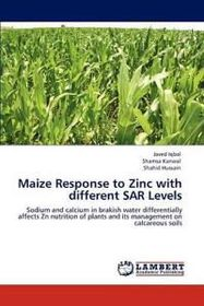 Maize Response to Zinc with Different Sar Levels