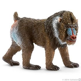 Schleich Mandrill, Male