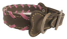 Pucci Leather Collar Brown - Medium 36cm x 1.8cm