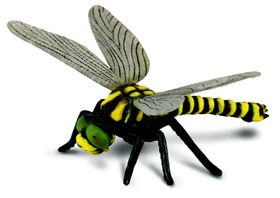 Collecta Insects-Golden-Ringed Dragonfly -L