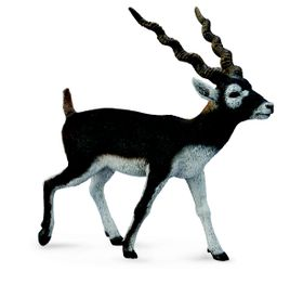 Collecta Wildlife-Blackbuck-L