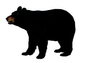 Collecta Wildlife-American Black Bear-L