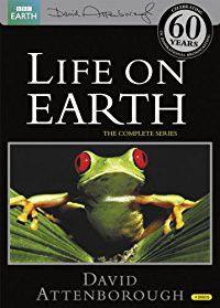Life On Earth (DVD)