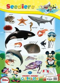 Butterfly Wallchart - Mickey Mouse Seediere
