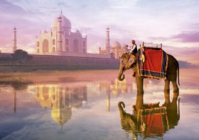 Elephant at Taj Mahal, Educa Puzzle - 1000 piece