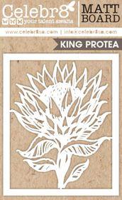 Celebr8 Picture Perfect Matt Board Midi - Protea