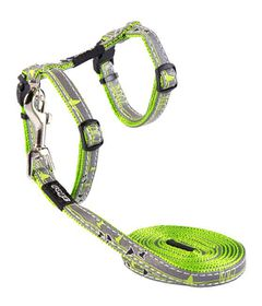 Rogz Night Cat Reflective Cat Lead & H-Harness Combination - Lime Swallows Design