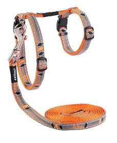 Rogz Night Cat Reflective Cat Lead & H-Harness Combination - Orange Birds on Wire Design