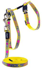 Rogz - Reflecto Cat H-Harness & Lead Combination - Dayglo Bird Design