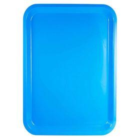 Lumoss - Plastic Rectangle Tray 42 cm x 30 cm - Cyan Blue