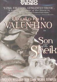 Son of the Sheik - (Region 1 Import DVD)