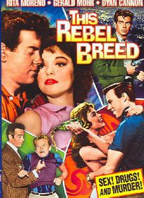 This Rebel Breed - (Region 1 Import DVD)