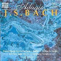 Adagio - Various Artists (CD)