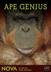 Ape Genius - (Region 1 Import DVD)