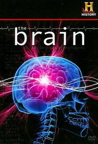 Brain - (Region 1 Import DVD)