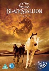 Young Black Stallion - (Import DVD)