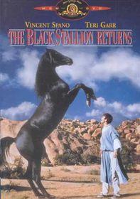Black Stallion Returns - (Region 1 Import DVD)