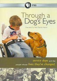 Through a Dog's Eyes - (Region 1 Import DVD)