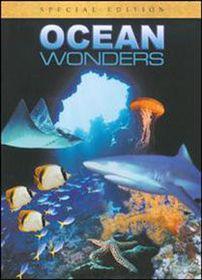 Ocean Wonders - (Import DVD)