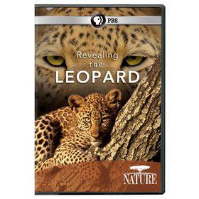 Nature:Revealing the Leopard - (Region 1 Import DVD)