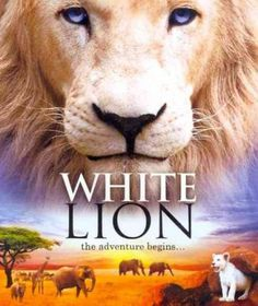 White Lion - (Region A Import Blu-ray Disc)