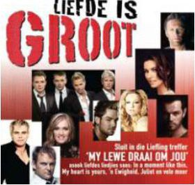Liefde Is Groot - Various Artists (CD)