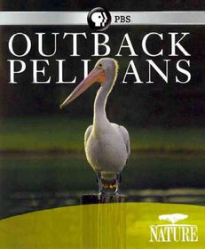 Nature:Outback Pelicans - (Region A Import Blu-ray Disc)